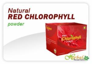 Red Chlorophyll Powder